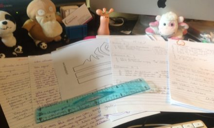 Mon aventure littéraire : phase 1