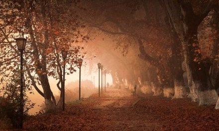 Fantastique : Nevermoor de Jessica Townsend